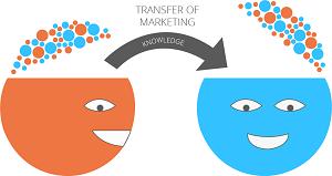 marketing skills transfer